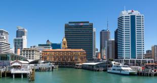 newzealand startups