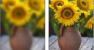 unblur -pictures-online
