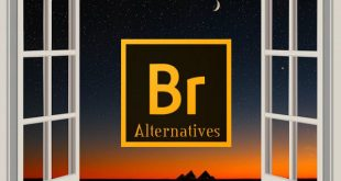Adobe Bridge Alternatives